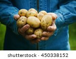 farmer holding in hands the... | Shutterstock . vector #450338152