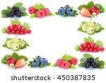 berries strawberries...   Shutterstock . vector #450387835
