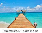 seaview on the island | Shutterstock . vector #450511642