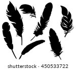 vector  isolated feathers... | Shutterstock .eps vector #450533722