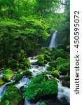 shiraito no taki   waterfall ... | Shutterstock . vector #450595072