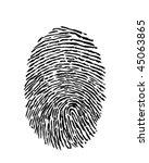 fingerprint vector | Shutterstock .eps vector #45063865