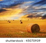 Golden Sunset Over Farm Field...