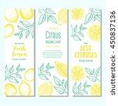 citrus vertical banner... | Shutterstock .eps vector #450837136