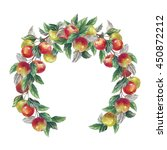 watercolor hand drawn apples...   Shutterstock . vector #450872212
