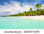 Coconut Palm trees on white sandy beach in Punta Cana, Dominican Republic