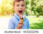 small boy with charming blue... | Shutterstock . vector #451022296