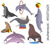 marine circus animals set.... | Shutterstock .eps vector #451071625