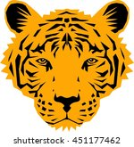 tiger head vector illustration