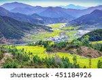 terraced fields of wuyuan... | Shutterstock . vector #451184926