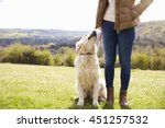 Stock photo close up of golden retriever on walk in countryside 451257532