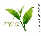 green tea leaf  | Shutterstock .eps vector #451308388