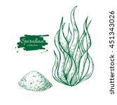 spirulina seaweed powder hand... | Shutterstock .eps vector #451343026