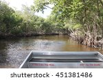 Small photo of Florida Everglades Airboat Ride