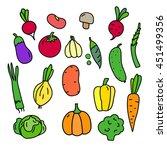 set vegetables tomato  pumpkin... | Shutterstock . vector #451499356