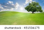green tree nature landscape on... | Shutterstock . vector #451536175