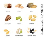 seeds and nuts vector icons in... | Shutterstock .eps vector #451602136