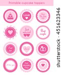 vector set of circle pink... | Shutterstock .eps vector #451623346