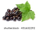 Blackcurrant Bunch  Ribes...