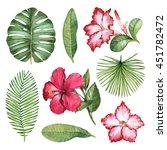 watercolor illustrations of...   Shutterstock . vector #451782472
