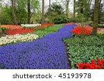 spring flower bed in keukenhof... | Shutterstock . vector #45193978