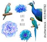 set of blue flowers and birds ... | Shutterstock . vector #451940782
