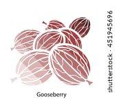 gooseberry icon. flat color...