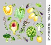 isolated watercolor vegetables... | Shutterstock . vector #451975072