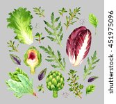 isolated watercolor vegetables... | Shutterstock . vector #451975096