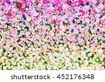 pattern of fresh colorful roses | Shutterstock . vector #452176348
