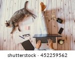 Stock photo creative workspace girl working with her cute grey cat 452259562
