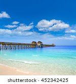 Naples Pier And Beach In...