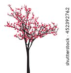 Full Bloom Pink Sakura Tree ...