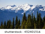 olympic national park | Shutterstock . vector #452401516