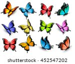 Stock vector collection of colorful butterflies flying in different directions vector 452547202