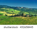 vineyard in the chianti region... | Shutterstock . vector #452658445