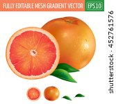 grapefruit on white background. ... | Shutterstock .eps vector #452761576