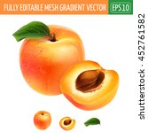 Apricot On White Background....