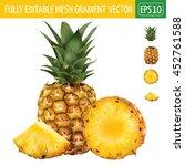 pineapple on white background.... | Shutterstock .eps vector #452761588