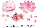 Petals And Rose  Sakura  Peony...