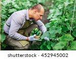 young male gardener working in... | Shutterstock . vector #452945002