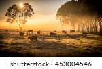 a herd of cattle in pasture ... | Shutterstock . vector #453004546