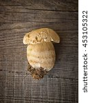 Small photo of Mushroom Boletus over Wooden Background. Autumn Cep Mushrooms. Porcini Picking