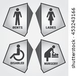 modern toilet set icon with... | Shutterstock .eps vector #453243166