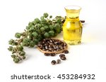 Castor Oil With Castor Fruits ...