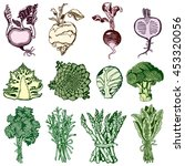 hand drawn set with vegetables. ... | Shutterstock .eps vector #453320056