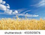ripe wheat on a beautiful... | Shutterstock . vector #453505876