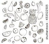 fruits and berries set  ink... | Shutterstock .eps vector #453522505