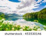 The Alpsee Is A Lake In Bavari...