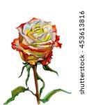 hand drawn botanical... | Shutterstock . vector #453613816